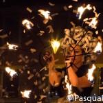 pasqualesoria__D7A0065